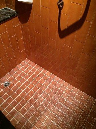 Hôtel Barrière Le Majestic Cannes: Gross shower