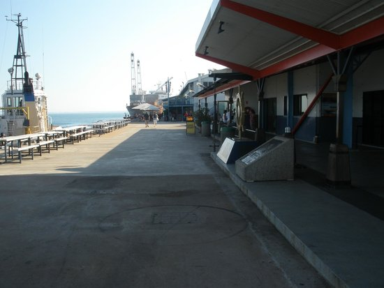Darwin Wharf Precinct: Looking towards the Cafe's