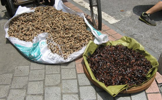 Qingping Medicine Market : Drying cockroaches