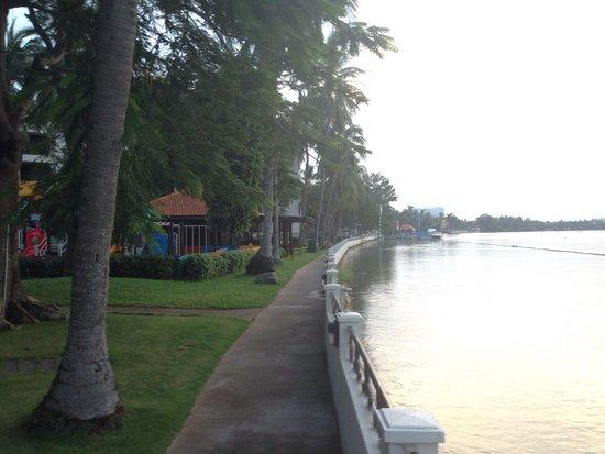 Riverside Serviced Apartments: Passeggiata sul fiume
