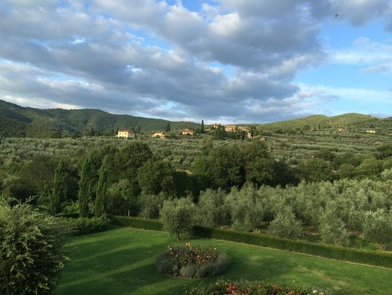 Casa Portagioia - Tuscany Bed and Breakfast: View from the Portagioia grounds