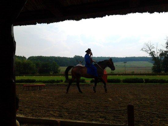 Lazar Equestrian Park: Al galoppo