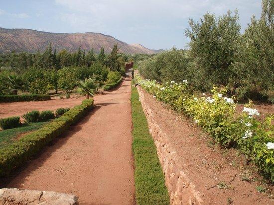 Domaine Malika: Gardens