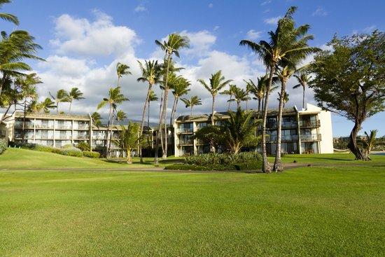 Wailea Beach Marriott Resort & Spa: Hales