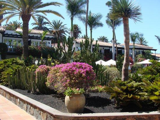 Seaside Grand Hotel Residencia: Chambres avec vue sur la piscine