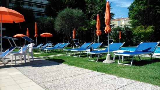 Hotel Savoia Thermae & SPA: giardino e lettini
