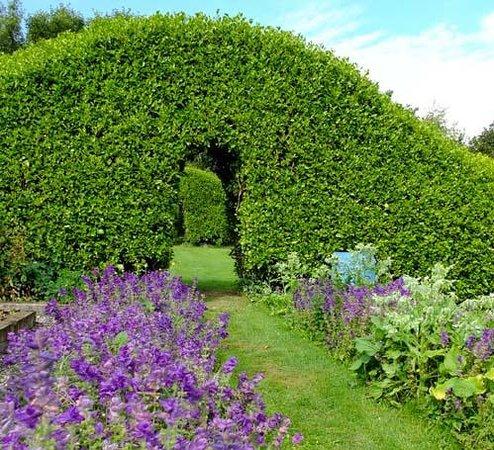 Glebe Gardens and Gallery