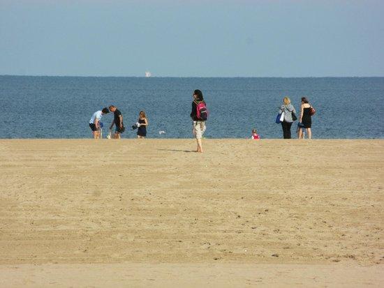 Plage de Deauville : Sabbia a perdita d'occhio