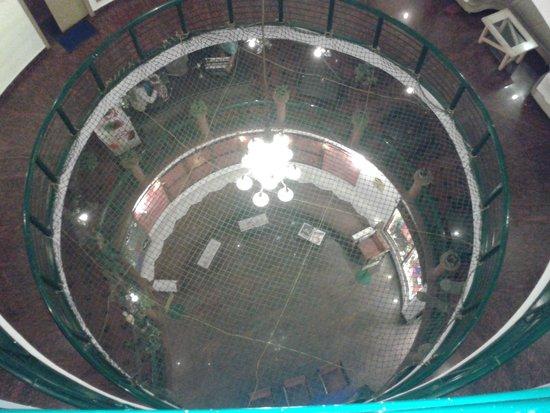 Parklane Hotel: view to down floor
