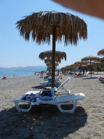 Le Palme Garden: Spiaggia