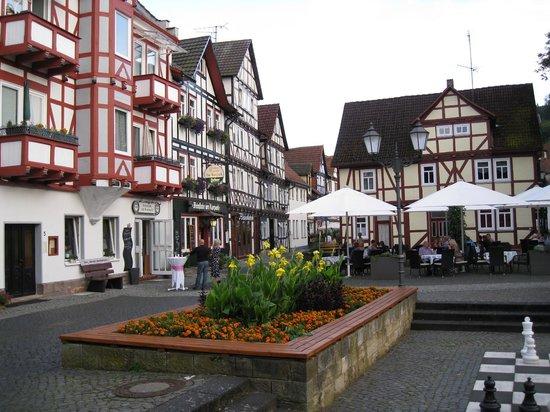 EKKOs Kultur- und Tagungshotel: View from the window