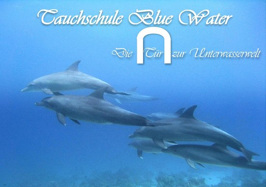Tauchschule Blue Water