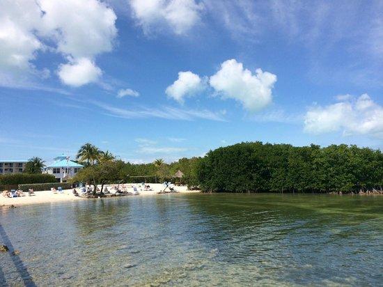 Ocean Pointe Suites at Key Largo: Ocean Pointe Suites Key Largo