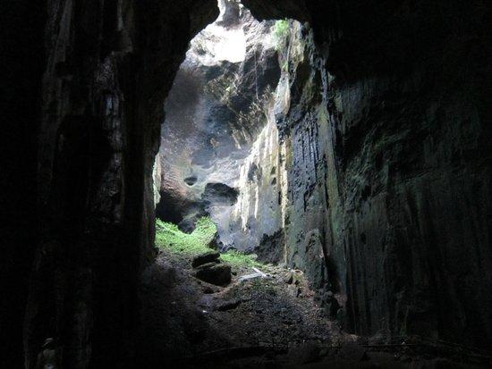 Osman's Homestay: Gomantong Cave