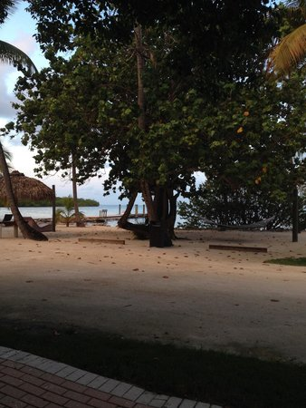 Lime Tree Bay Resort: More of the view from room 111