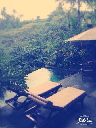 Bidadari Private Villas & Retreat: Piscine privée avec petite terrasse