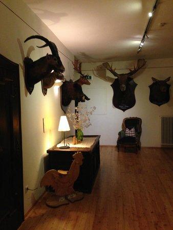 Hotel-Gasthof Weitgasser: stuffed animals in the hallway