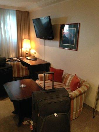 Eden Hotel Wolff : Standard Room