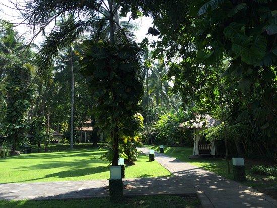 Rama Candidasa Resort & Spa: Grüne Hotelanlage