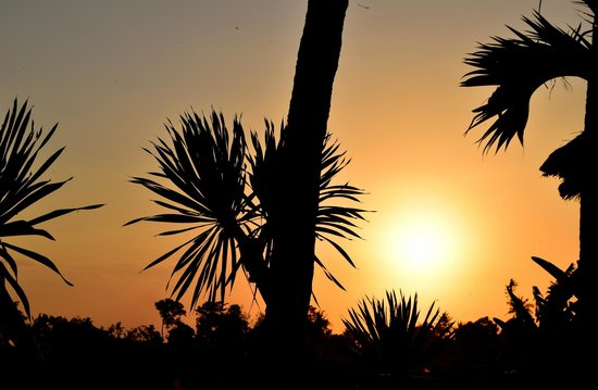 The Zala Villa Bali: Sunset view from the villa.