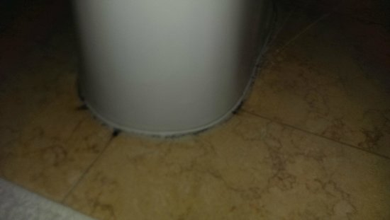 Four Seasons Hotel Doha: mold on the bathroom floor