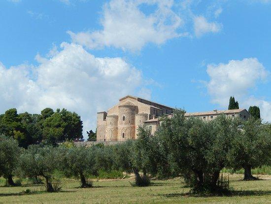 Abbazia di San Giovanni in Venere: sg in venere - panorama tra ulivi 2