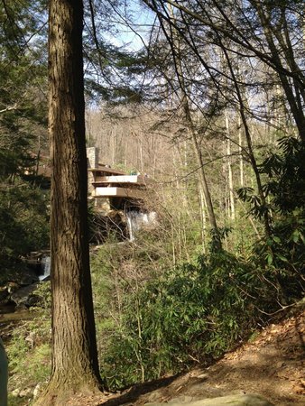 Fallingwater in the distance