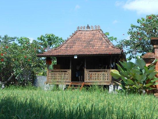 KajaNe Yangloni Private Boutique Health & Leisure Centre: notre chambre