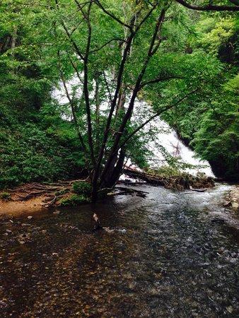 Yutaki Waterfall : 遊歩道から
