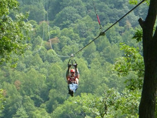Navitat Canopy Adventures - Asheville Zipline: Zipping at Navitat