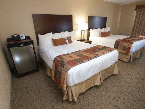 Best Western Plus Pembina Inn & Suites: Guest Room