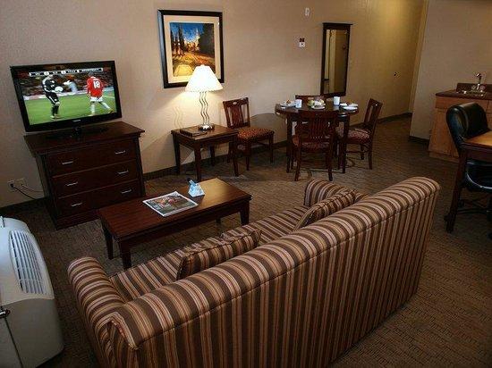 Best Western Plus Pembina Inn & Suites: Bachelor Suite
