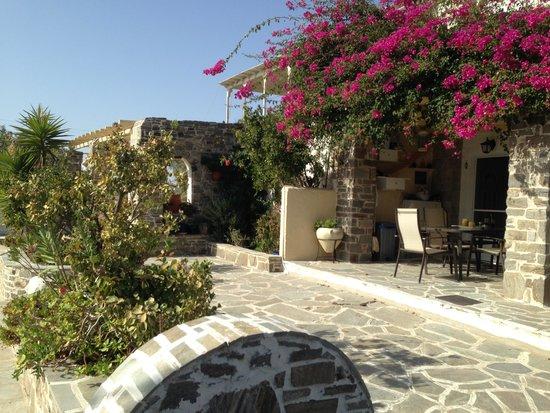 Asteras Paradise: Εγκαταστάσεις