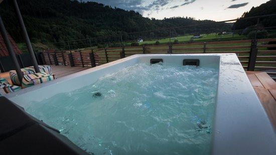 Hotel Kirnbacher Hof: Whirlpool