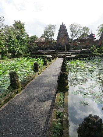 Saraswati Temple: temple