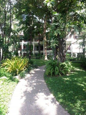 Hyatt Regency Hua Hin : 酒店的園林景色