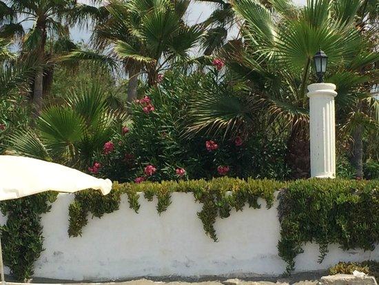 Hotel Club Tropical Beach: otoczenie hotelu