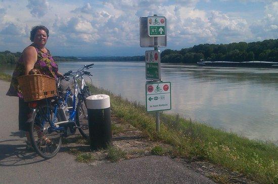 Camping & Pension Au an der Donau: fietsen langs de Donau