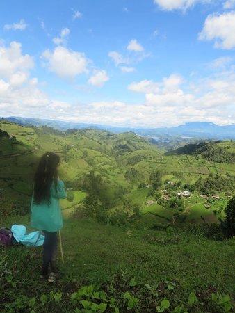 Bwindi Backpackers Lodge: Top of Heaven