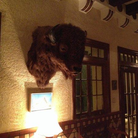 The Hotel Paisano : Impressive Bull head in the lobby