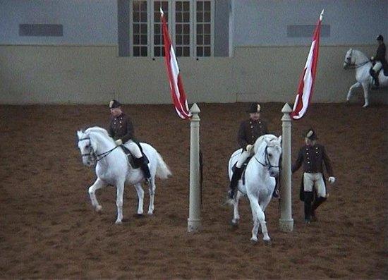 Spanische Hofreitschule: Spanish Riding School