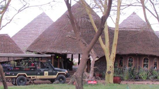 Tortilis Camp: tortillis camp