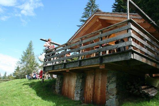 Hotel Gnollhof : Malga dell'hotel verso cui vien fatta una escursione con grigliata