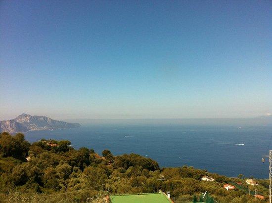 Residence Gocce di Capri : View of Capri