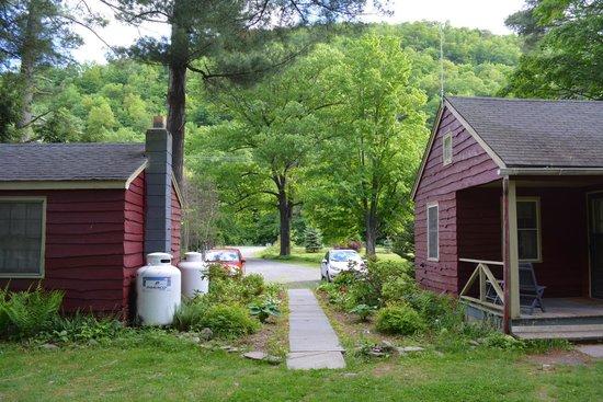Phoenicia Lodge : Parking near cottage