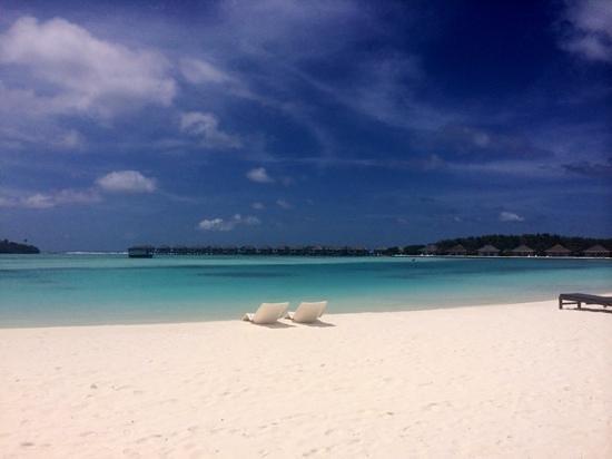 Cinnamon Dhonveli Maldives : lagoon