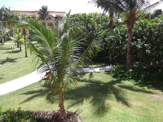 Grand Bahia Principe Tulum : The view from our balcony