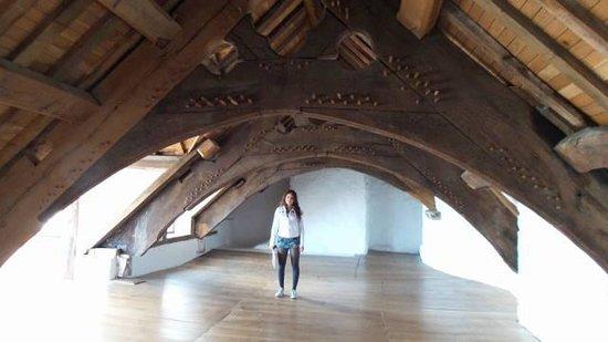 Plas Mawr: telhado