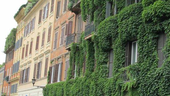 Kolbe Hotel Rome : Rua do hotel