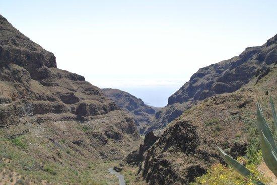 Barranco de Guayadeque : View from Barranco